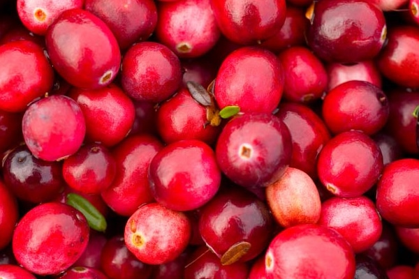 Mrs. S Thanksgiving Recipe Cranberry Nut Crunch