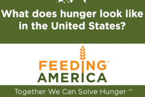 The Gingrich Foundation Charity of the Month: Feeding America
