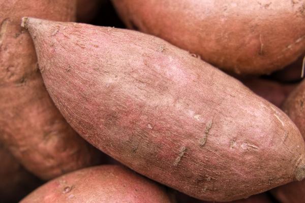 Joe DeSantis Sweet Potatoes Thanksgiving Recipe
