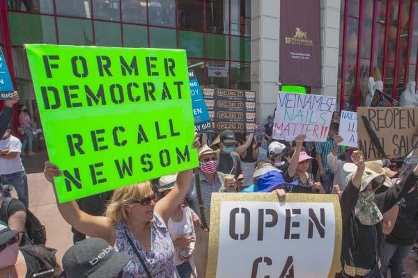Recall Gov. Newsom Newt's World Podcast