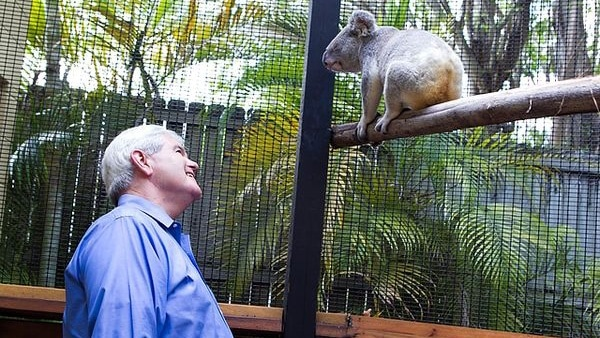 Newt Gingrich Why Zoos Matter Podcast