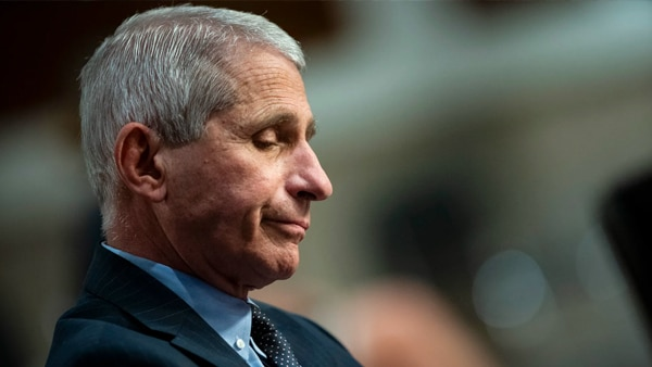 Newt Gingrich It is Time for Dr. Fauci to Retire