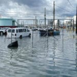 Newts World The Economic Impact of Hurricanes after the Storm